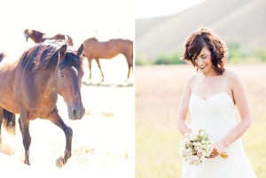 horse photo from Green Wedding Shoes Blog